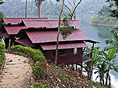 Cabins perched on a hillside overlooking Cheow Lan Lake